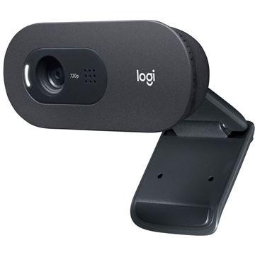 Picture of LOGITECH C505 HD spletna kamera